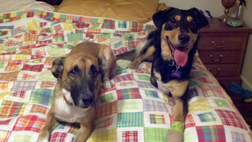 Ruby and Milton (WCAC ID 80000)