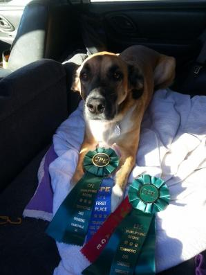 Ruby's CPE Ribbons