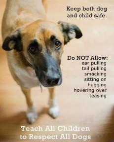 Children & Dogs_edited-1